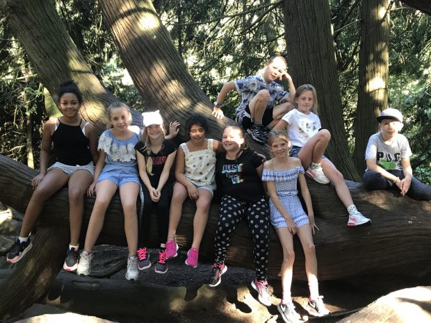A group of pupils sat in a tree in a woodland in a foreign country,